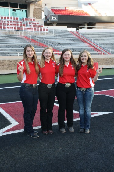 "A few of the ""Field Safety"" team. This team keeps the Masked Rider and Fearless Champion safe from the chaos of the large crowd at the Tech games."