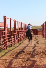 Though no day is ever the same, Cure's love for the cowboy way of life never changes.