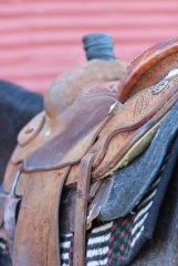 Whether he is practicing for his next rodeo or working on the ranch, you can almost always find Cure somewhere near a saddled horse.