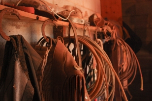 The smell of leather, alfalfa, and deeply rooted family traditions fill Tom's tack room.