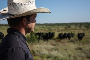 Dan looks past the Angus cattle across the ranch from under the brim of his cowboy hat. The Griffin brothers are beginning to take on more responsibility and involvement in the management of the land and raising cattle.