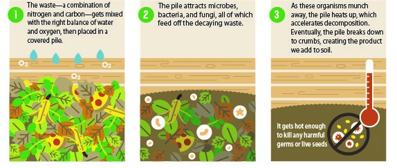 CompostPileInfographic
