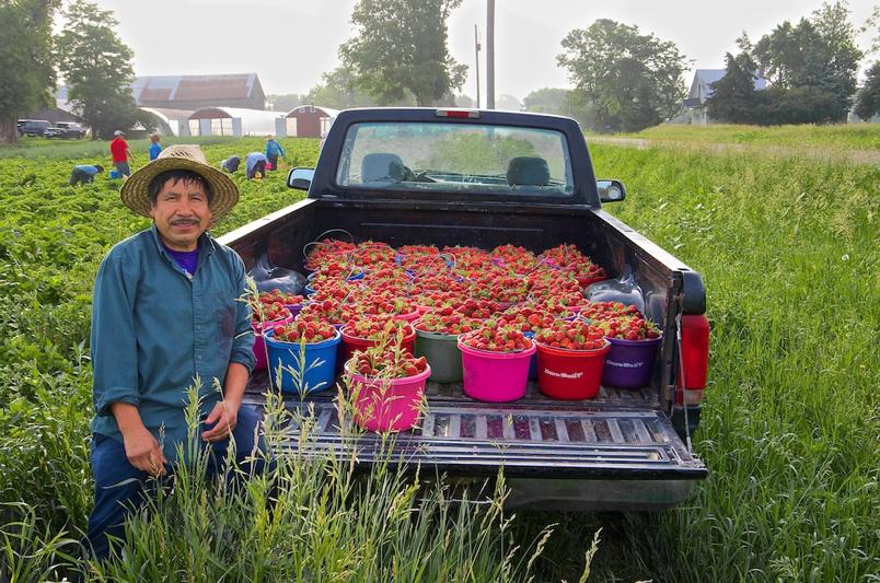 Montgomery_farmworker
