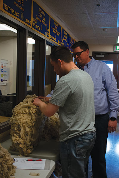 Jeff Klose instructing a student on how to grade a fleece for the Wool Juding Career Development Event.